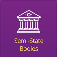 semi-state